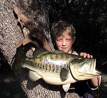 Large Mouth Bass Fish Replica